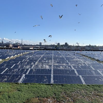 zonnepanelen reinigen voor